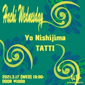 Hachi Wednesday